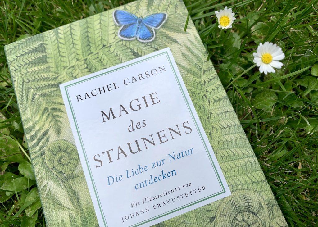 Buch Rachel Carson